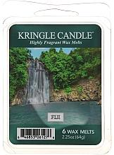 Parfumuri și produse cosmetice Ceară aromată - Country Candle Fiji Wax Melts