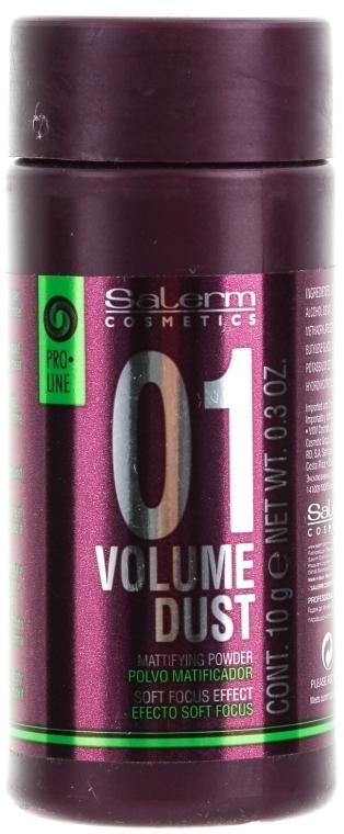 Pudră pentru păr - Salerm Pro Line Volume Dust 01 Mattifying Powder — Imagine N1