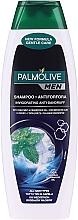 Parfumuri și produse cosmetice Șampon - Palmolive Men Invigorating Shampoo