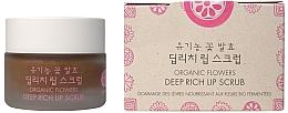 Parfumuri și produse cosmetice Scrub cu enzime de flori organice pentru buze - Whamisa Organic Flowers Deep Rich Lip Scrub