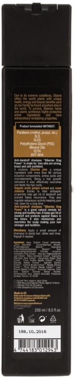 "Șampon anti-mătreață ""Stag Power"" - Natura Siberica — Imagine N2"