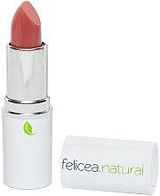Parfumuri și produse cosmetice Ruj mat de buze - Felicea Natural Lipstick