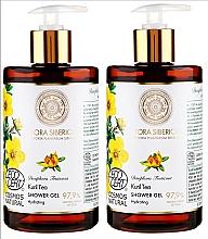 Parfumuri și produse cosmetice Set - Natura Siberica (sh/gel/2x480ml)