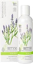 Parfumuri și produse cosmetice Șampon calmant pentru scalp și păr - Styx Naturcosmetic