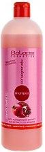 Parfumuri și produse cosmetice Șampon cu extract de rodie - Salerm Pomegranate Shampoo