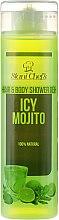 Parfumuri și produse cosmetice Gel de păr și corp - Hristina Stani Chef's Hair And Body Shower Gel Icy Mojito