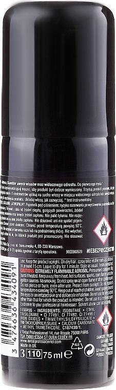 Spray nuanțator pentru rădăcinile părului - L'Oreal Professionnel Hair Touch Up — Imagine N2