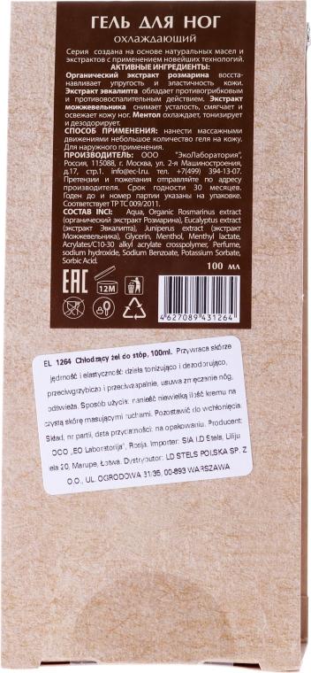 """Gel pentru picioare """"Răcoritor"""" - ECO Laboratorie Food Gel — Imagine N2"""