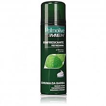 Parfumuri și produse cosmetice Spumă de ras - Palmolive Shaving Foam Menthol