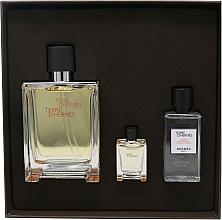 Hermes Terre D'Hermes - Set (edt/100 ml + ash/40 ml + edt/5 ml) — Imagine N3