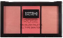 Parfumuri și produse cosmetice Paletă fard de obraz - Gabriella Salvete Rose Trio Blush Palette