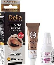 Parfumuri și produse cosmetice Vopsea Cremă pentru sprâncene - Delia Cosmetics Cream Eyebrow Dye