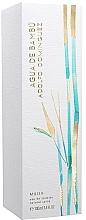Parfumuri și produse cosmetice Adolfo Dominguez Agua de Bambu - Apă de toaletă
