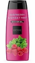 """Parfumuri și produse cosmetice Gel de duș """"Zmeură și mentă dulce"""" - Gabriella Salvete Raspberry & Sweet Mint Shower Gel"""