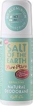 Parfumuri și produse cosmetice Deodorant natural Roll-On - Salt of the Earth Melon & Cucumber Natural Roll-On Deodorant