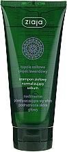 Șampon normalizant pe bază de plante - Ziaja Shampoo — Imagine N1