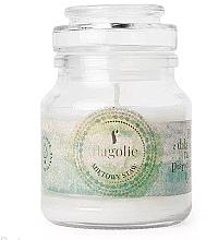 """Parfumuri și produse cosmetice Lumânăre aromată, în borcan """"Mint Pond"""" - Flagolie Scented Candle Boho Mint Pond"""