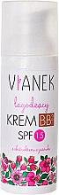 Parfumuri și produse cosmetice Cremă BB pentru pielea tăbăcită, cu efect de liniștire - Vianek Soothing BB Cream SPF15
