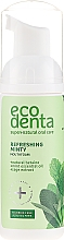 Parfumuri și produse cosmetice Spumă cu ulei de mentă și betaină naturală pentru cavitatea bucală - Ecodenta Mouthwash Refreshing Oral Care Foam