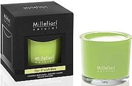"""Parfumuri și produse cosmetice Lumânare aromatică """"Flori de orhidee"""" - Millefiori Milano Natural Candle Fior d'Orchidea"""