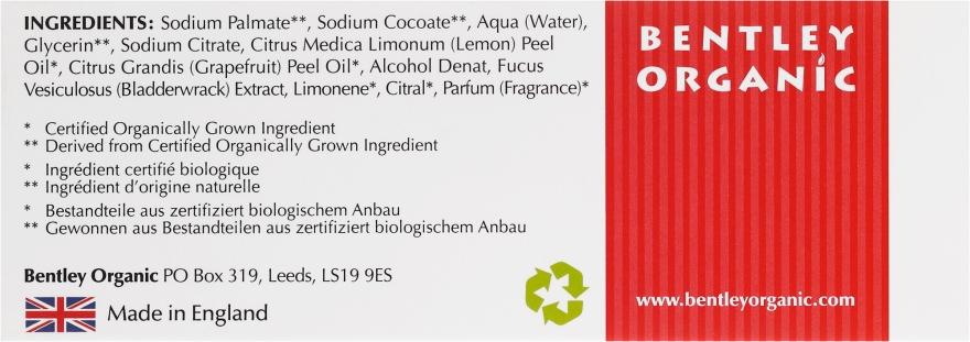 Săpun detox - Bentley Organic Body Care Detoxifying Soap Bar — Imagine N3