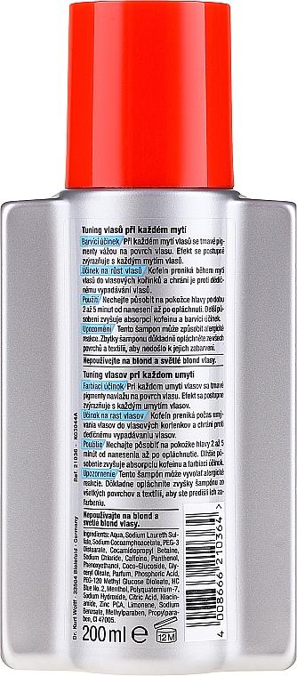 Șampon nuanțator - Alpecin Anti Dandruff Tuning Shampoo — Imagine N2