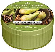 Parfumuri și produse cosmetice Lumânare aromată - Country Candle Anjou& Allspice Daylight