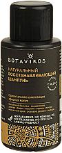 Parfumuri și produse cosmetice Șampon regenerant pentru păr - Botavikos Natural Repairing Shampoo (mini)