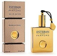 Parfumuri și produse cosmetice Esteban Collection Orientaux Ambrorient - Apă de parfum (tester cu capac)