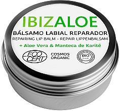 Parfumuri și produse cosmetice Balsam hidratant de buze - Ibizaloe Repairing Lip Balm