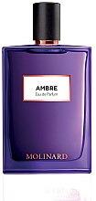 Parfumuri și produse cosmetice Molinard Ambre - Apă de parfum (tester cu capac)