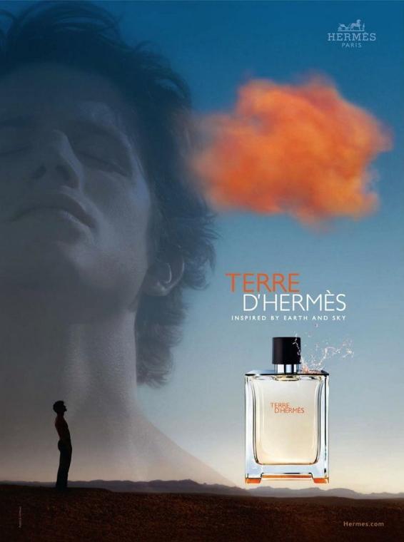 Hermes Terre dHermes - Deodorant stick — Imagine N3