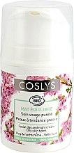 Parfumuri și produse cosmetice Cremă de zi pentru pielea grasă - Coslys Day Cream Oily Skin Types