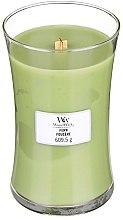 Parfumuri și produse cosmetice Lumânare aromată - WoodWick Hourglass Candle Fern
