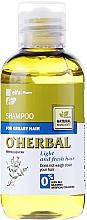 Parfumuri și produse cosmetice Șampon pentru păr gras cu extract de mentă - O'Herbal