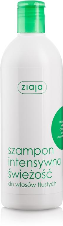 "Șampon revigorant pentru păr gras ""Mentă"" - Ziaja Shampoo"