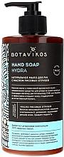 Parfumuri și produse cosmetice Săpun lichid cu ulei de tărâțe de orez - Botavikos Hydra Hand Soap