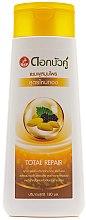 Parfumuri și produse cosmetice Șampon pentru păr slab - Twin Lotus Golden Silk Herbal Total Repair Shampoo