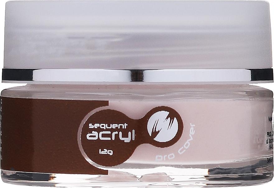 Gel acrilic, 12 g - Silcare Sequent Acryl