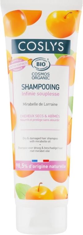 Șampon pentru păr uscat și deteriorat, cu ulei de mirabella - Coslys Shampoo for dry and damaged hair with oil Mirabella — Imagine N1