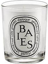 Parfumuri și produse cosmetice Lumânare aromatică - Diptyque Baies Candle