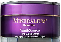Parfumuri și produse cosmetice Cremă anti îmbătrânire pentru față - Minerallium Youth Source Anti-Aging Cream