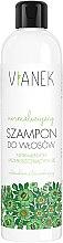 Parfumuri și produse cosmetice Șampon echilibrator pentru păr - Vianek Normalizing Shampoo