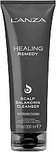 Parfumuri și produse cosmetice Remediu de curățare pentru scalp - Lanza Healing Remedy Scalp Balancing Cleanser