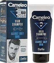 Parfumuri și produse cosmetice Șampon pentru bărbați - Delia Cameleo Men Against Grey Hair Shampoo