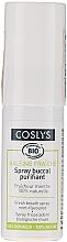 Parfumuri și produse cosmetice Spray cu aromă de mentă pentru cavitatea bucală - Coslys