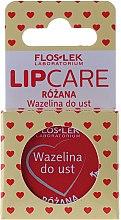 "Vaselina cosmetică pentru buze ""Trandafir"" - Floslek Lip Care Cosmetic Lip Vaseline Rose — Imagine N1"