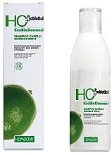 Parfumuri și produse cosmetice Șampon pentru păr gras - Specchiasol HC+ Shampoo For Oily Hair Sebum Regulatory