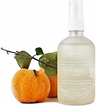 Parfumuri și produse cosmetice Mist hidratant cu acid hialuronic și extract de gutui pentru față - Uoga Uoga