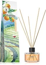 """Parfumuri și produse cosmetice Difuzor de aromă """"Portocală braziliană"""" - Allvernum Allverne Home&Essences Diffuser"""